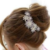 Beautiful Jewelry Flowers Crystal Hair Clips – for hair clip Beauty Tools