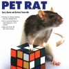 Training Your Pet Rat